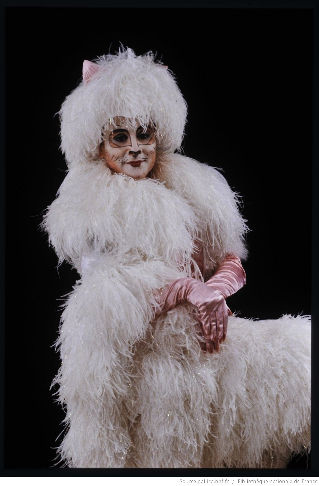 Cats Musical Image By Lou On Cats Musical In 2020 Cat Costumes