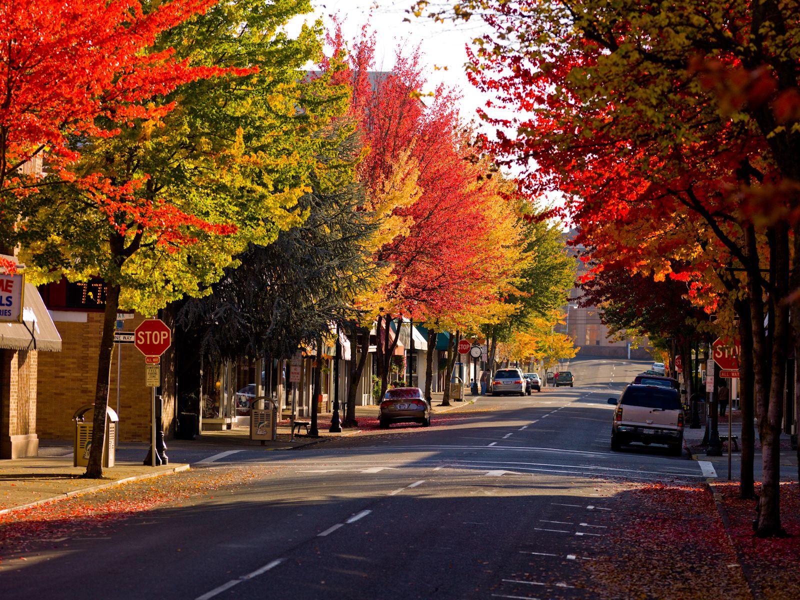 Downtown roseburg oregon fcr pinterest pacific