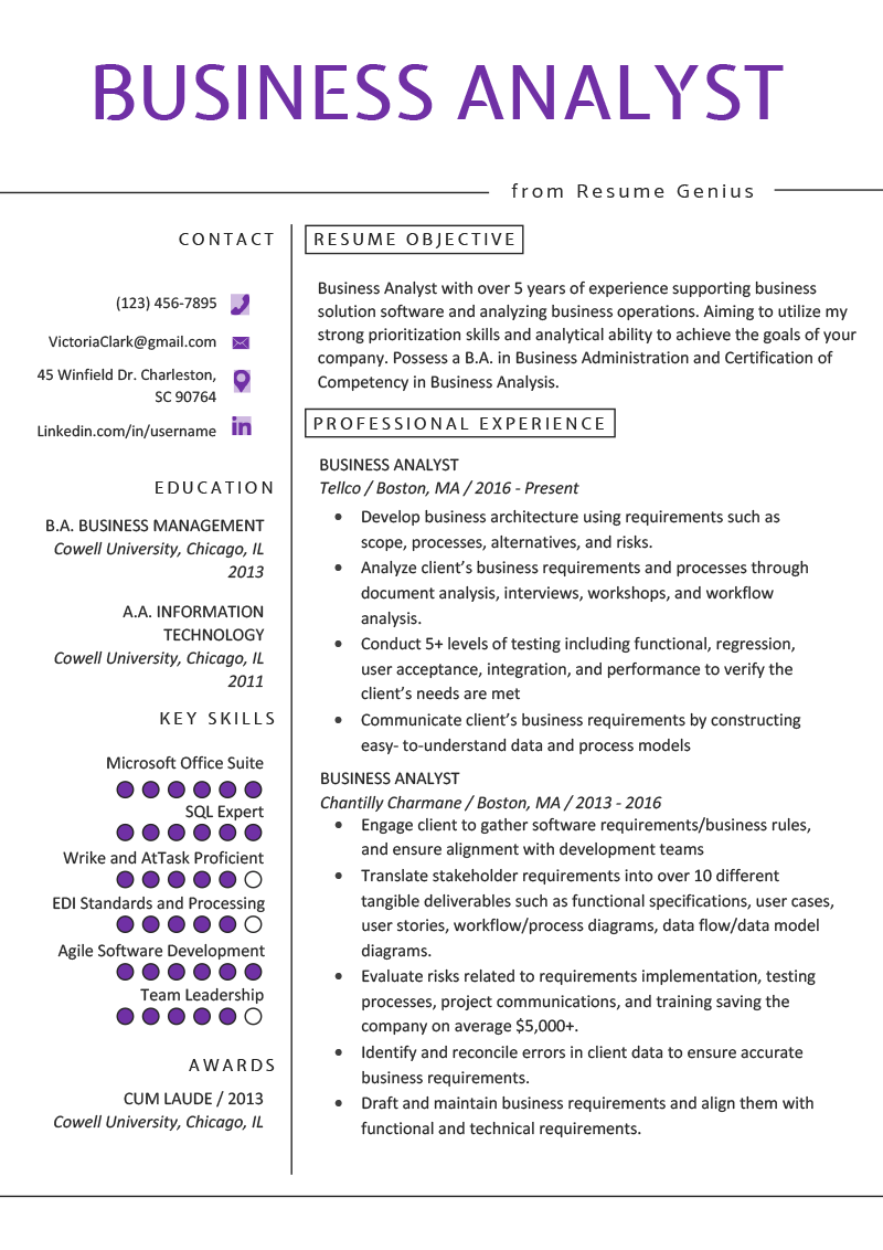 Business Analyst Resume Example & Writing Guide Business