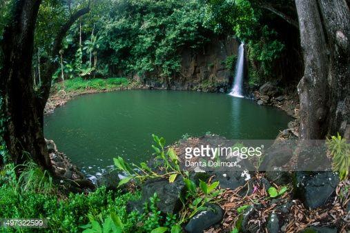 Lawai Waterfall And Pond National Tropical Botanical Garden Kauai .