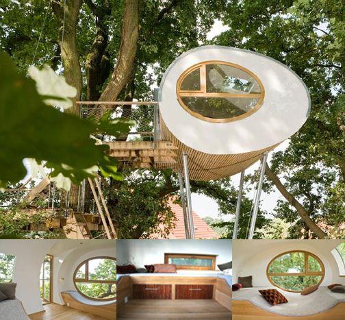 Luxury Tree Houses Designs: ... Architect, A Tree Expert