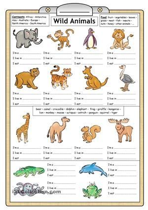 Wild animals reading  writing worksheet free esl printable worksheets made by teachers also rh pinterest