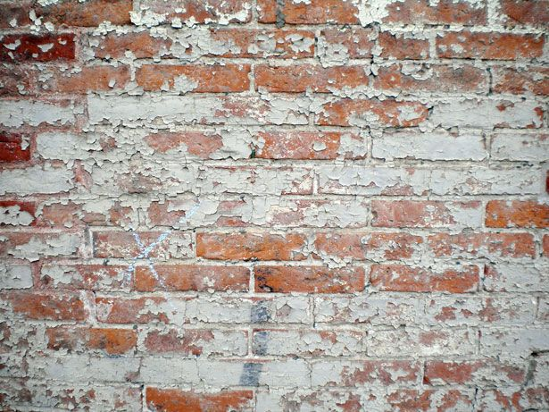 Why Your Emotional Intimacy Has Hit a Brick Wall