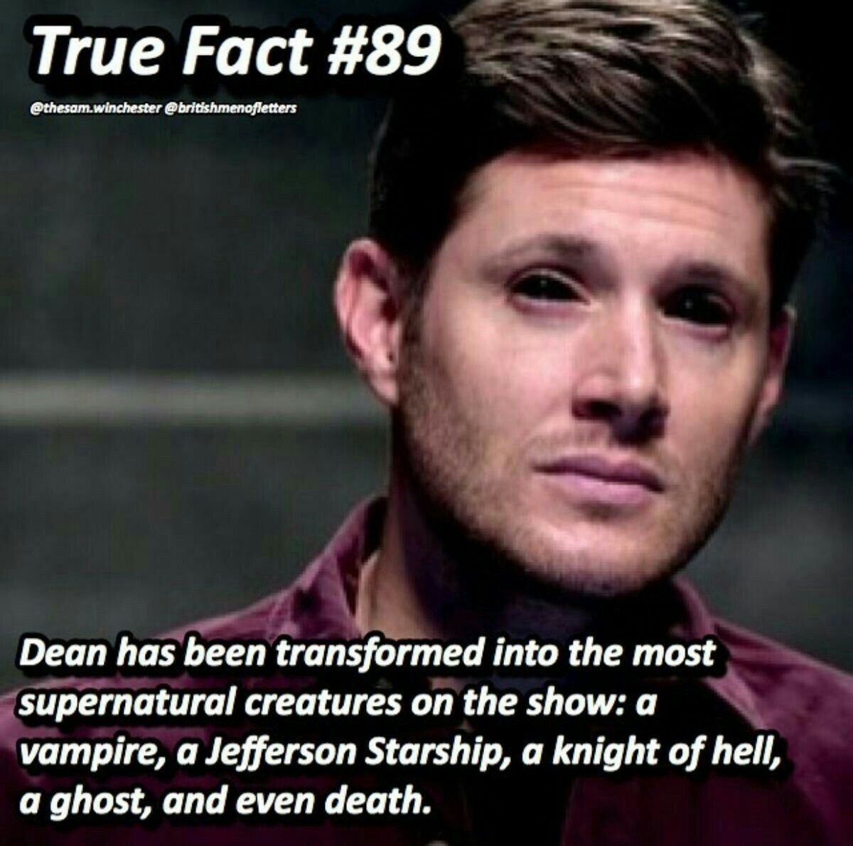 Supernatural Memes I Question Whether Dean Was Transformed Into A Jefferson Starship Eve Bit Him But