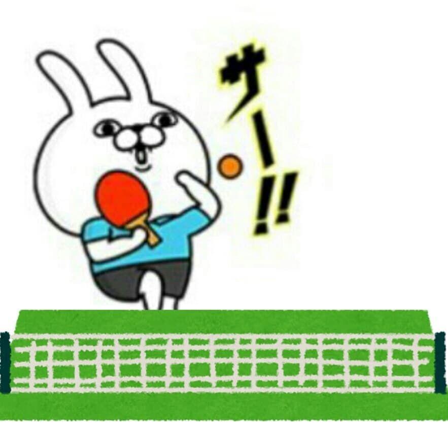 Kida85 On Instagram うさぎさんが卓球してる なんでも