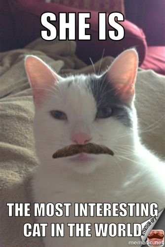 My meme and moustache creation lol