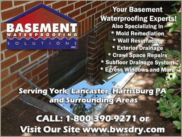 mold remediation in lancaster pa mold removal mold in basement rh pinterest ca