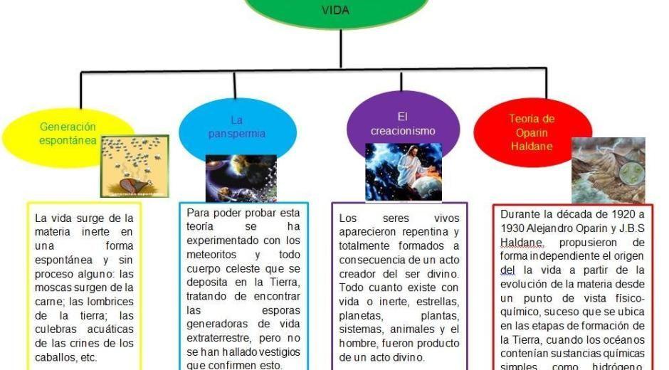 Cuadros Comparativos Sobre Las Teorías Del Origen Del Vida Cuadros Comparativos Teoría Celular Teoría Clase De Biología