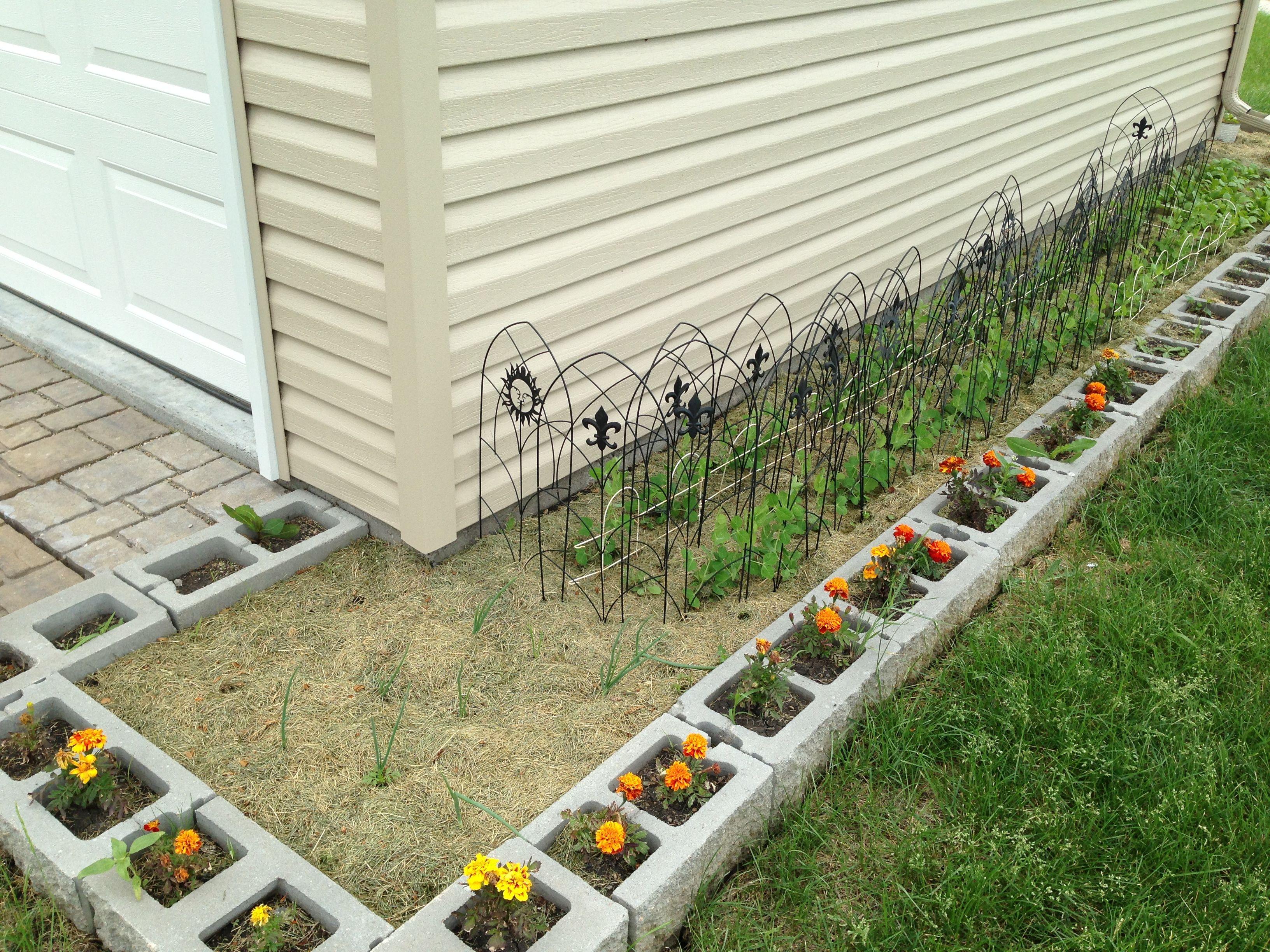 Cinder Block Garden GardenCinder BlocksEdging