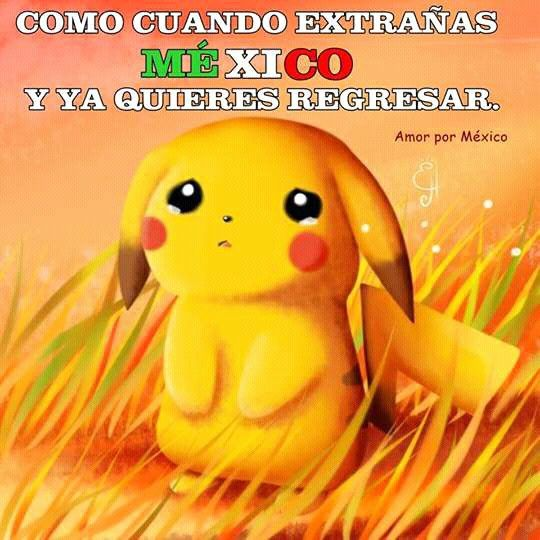 Pin by Diane on Pokemon (With images) | Cute pikachu ...