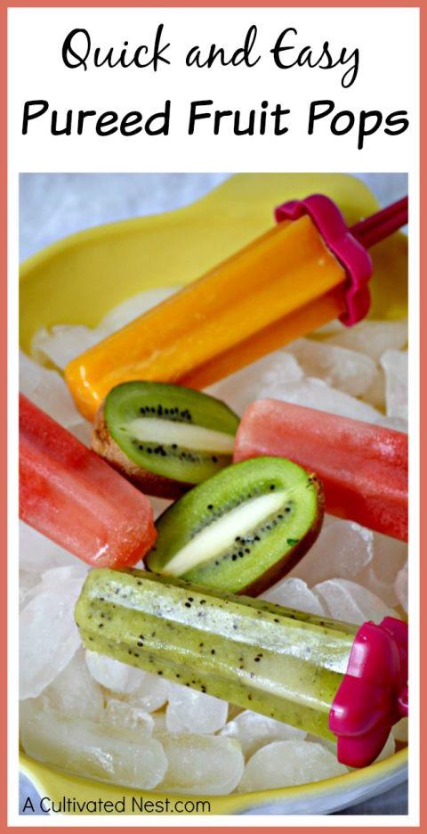 Pureed fruit pops