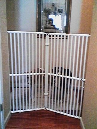Extra Tall Dog Gate Pet Gates Pinterest Dogs Tall Dog Gates