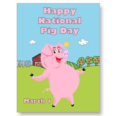 pig day march 1st postcard zazzle com