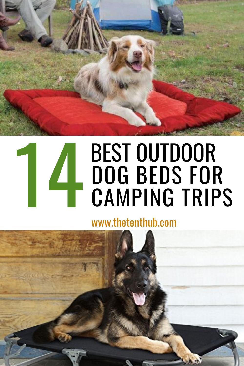 14 Best Outdoor Dog Beds (With images) Dog camping