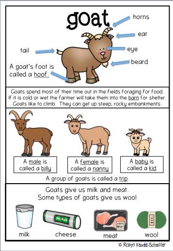 Farm Animals Posters anchor charts Farm animals