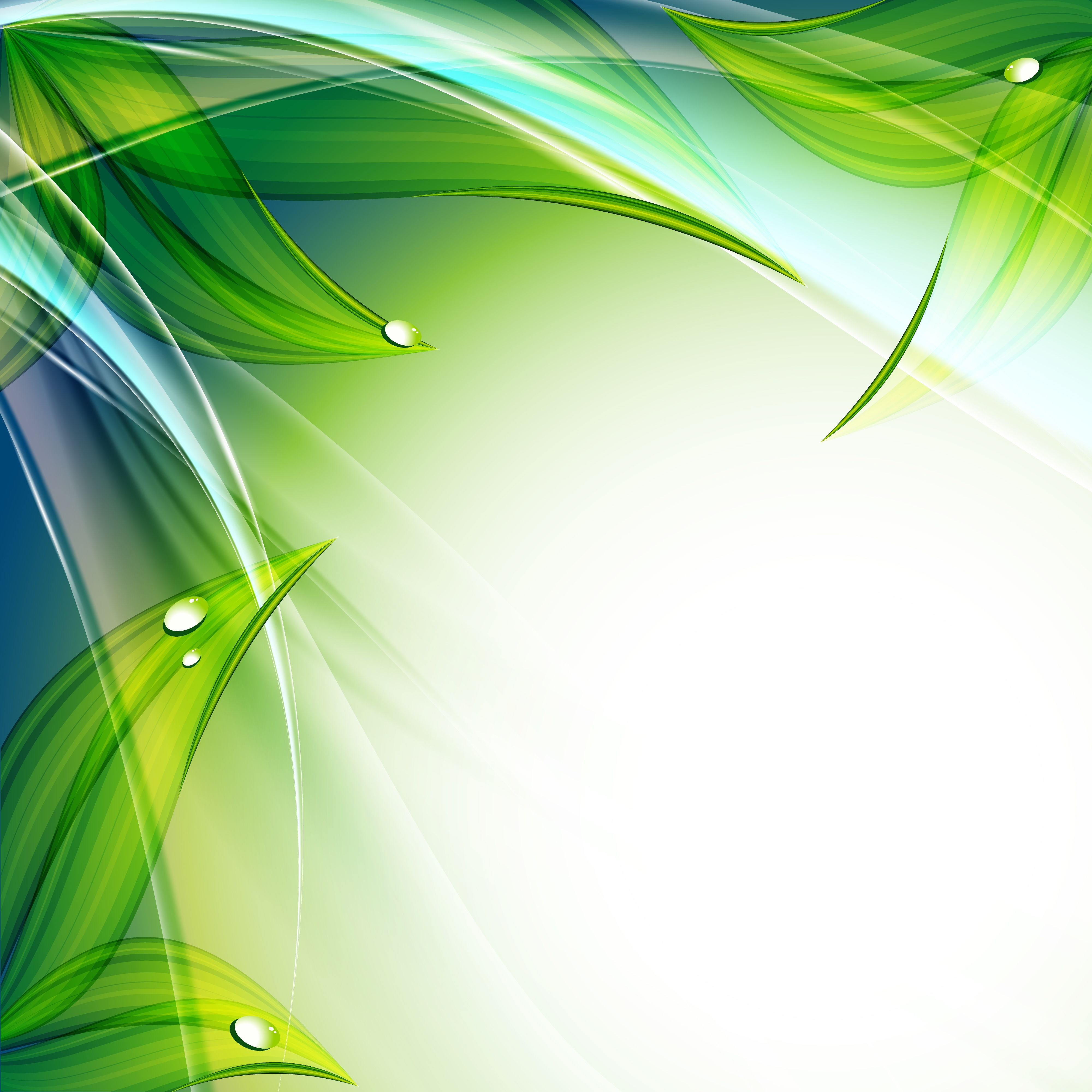 White Background with Green Curves 4238090, 4000x4000