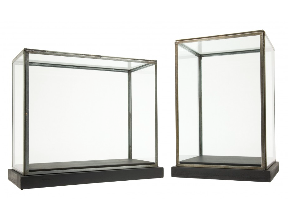 Glazen Kubus Display.Jayson Home Specimen Display Cases Vitrine In 2018