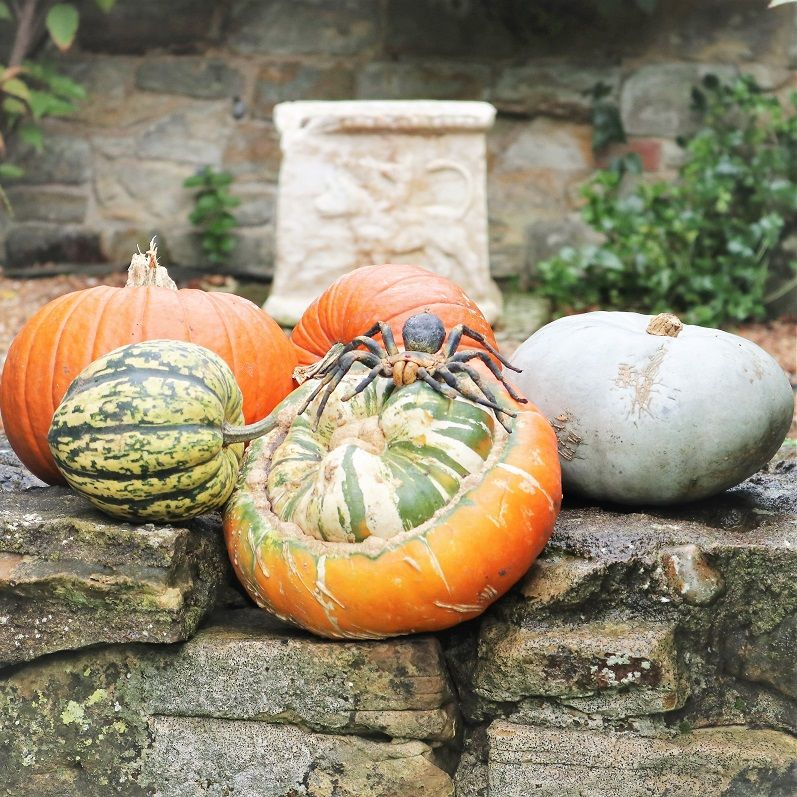 Hever Castle Luxury Bed And Breakfast For Halloween Bed