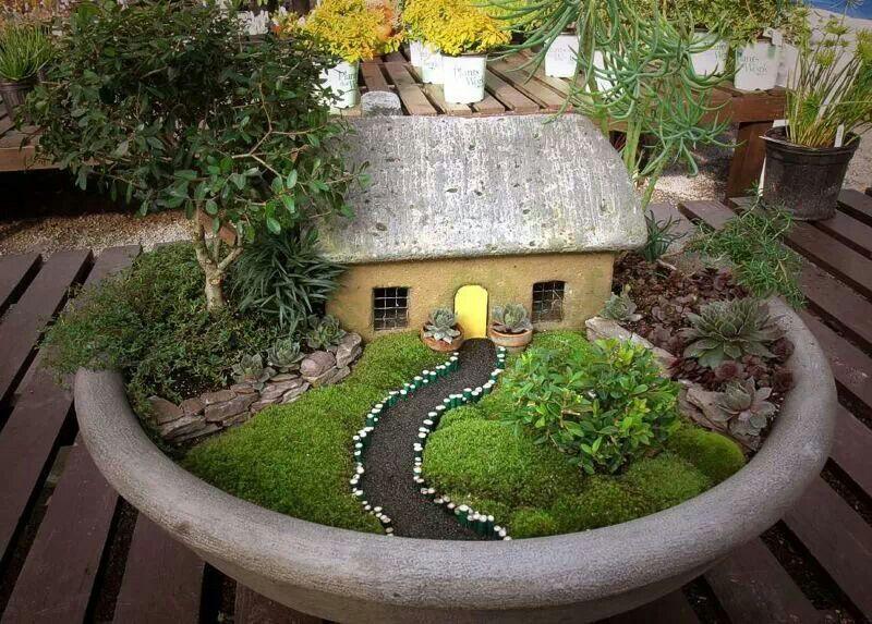Mini jardin 1 Proyecto jardines Pinterest