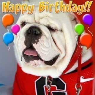 Happy Birthday 8 10 15 Bulldog Happy Birthday Georgia Bulldog