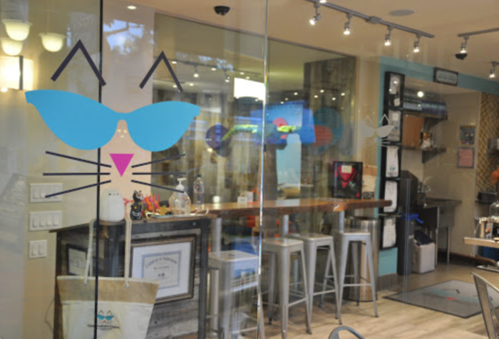Catmosphere Laguna Is A Completely CatThemed Catopia Of A