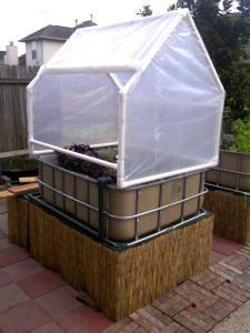 IBC Greenhouse (for a single IBC)   IBC TOTE IDEAS   Aquaponics
