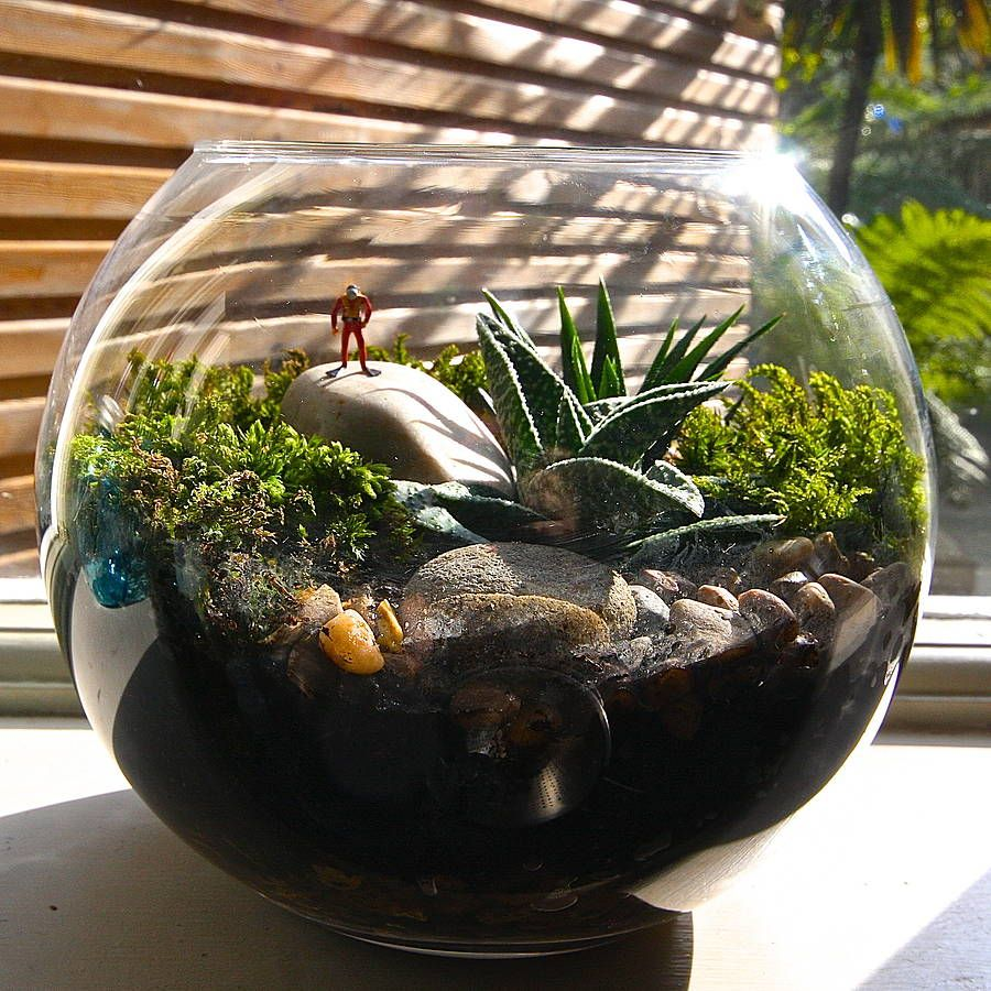 mini world policeman terrarium kit lil b 39 s home. Black Bedroom Furniture Sets. Home Design Ideas