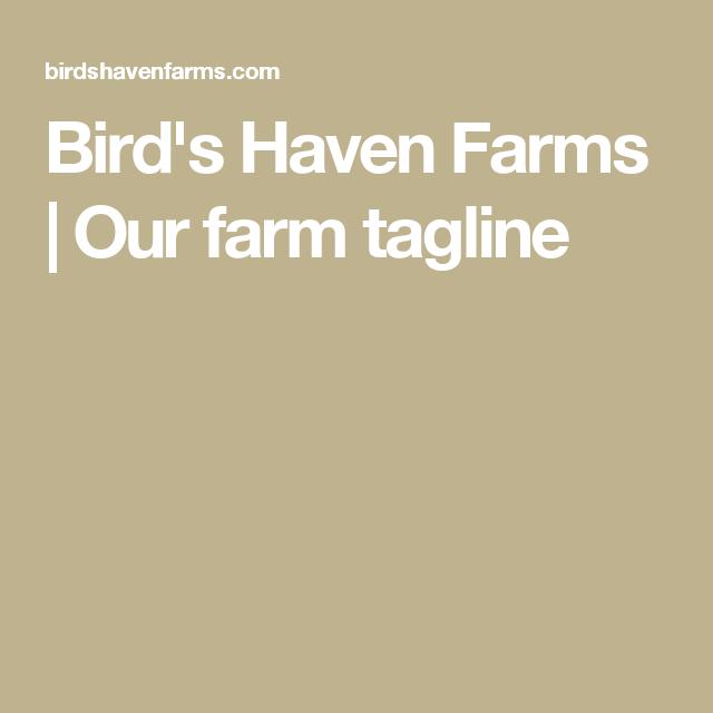 Bird's Haven Farms | Our farm tagline