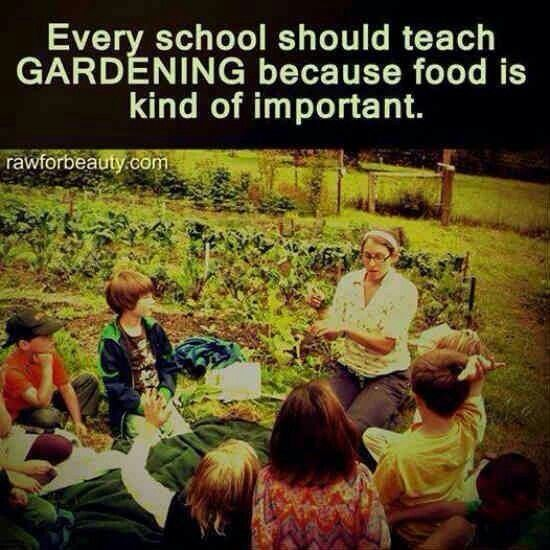 f40e11f1bd01a16a9c842fb032f14860 - Why Gardening Should Be Taught In Schools