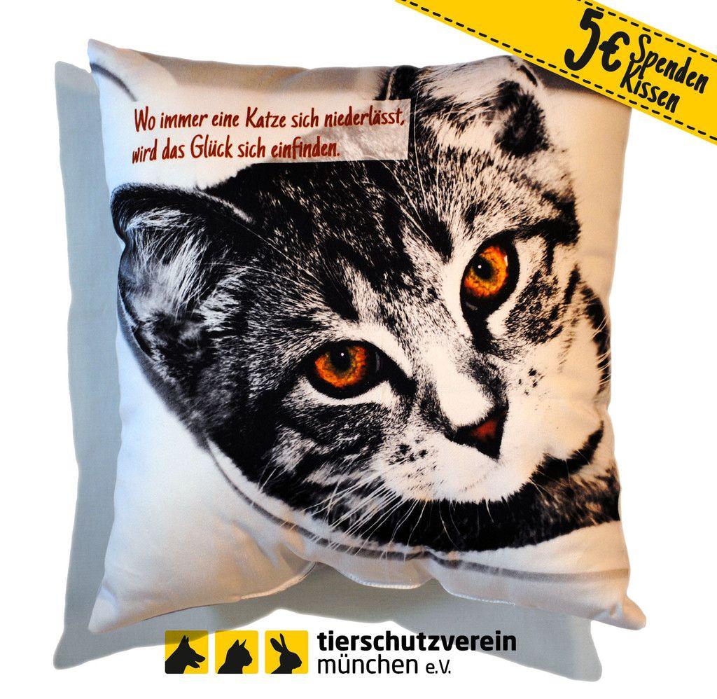 Spendenkissen Katzenmadel Betty Bei Www Dayogo De Tiere Katzenliebhaber Tierheim