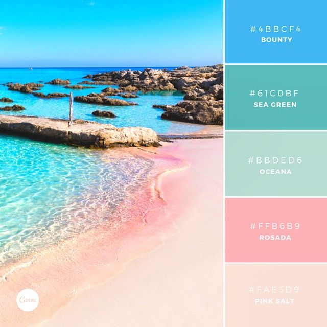 Beachy Color Palette With Images Beach Color Brand Color
