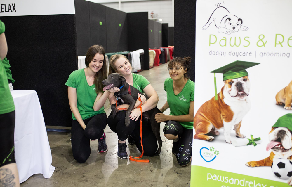 Pin On Dog Events In Australia