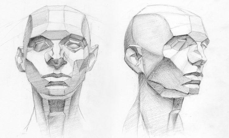 анатомия лица человека для художников картинки это
