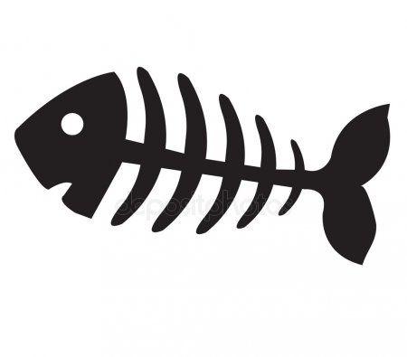 Fish Bone Fish Skeleton Fish Skeleton Fish Bone Tattoo Fish Bone