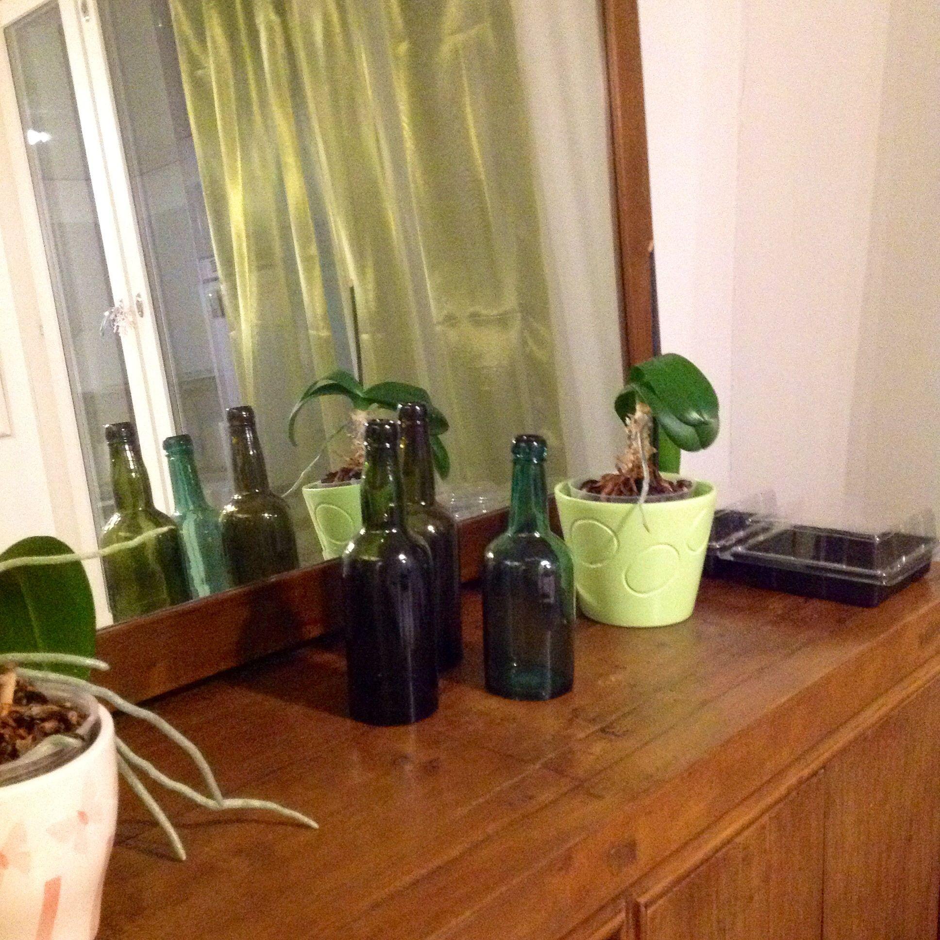 Kirpparilöytöja ja kevään vihreää