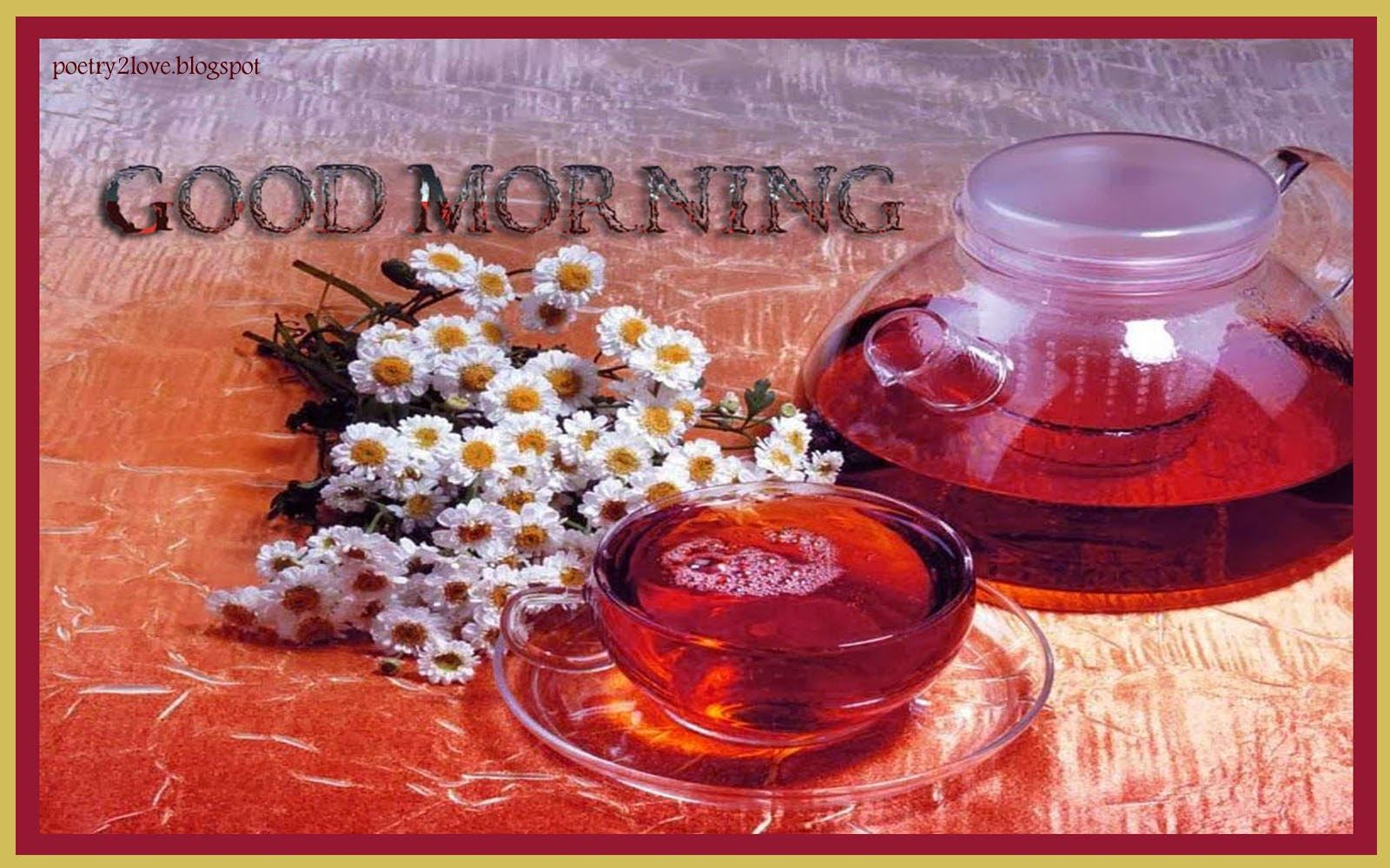 Good Morning Urdu Romantic And Lovely Sms Hd Wallpapers Free Download Poetry Sms Tea Wallpaper Good Morning Beautiful Flower Tea