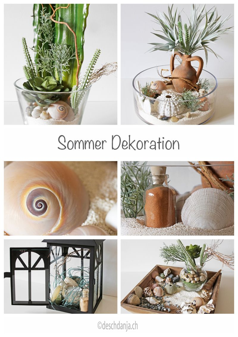 Photo of Summer decoration with sand, succulents, shells and stones, www.deschdanja.ch