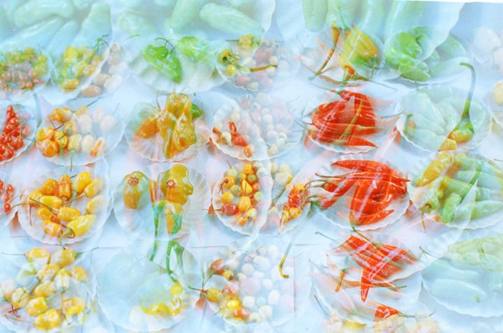 As pimentas são valorizadas pela estética e pela maneira de anunciar um conceito de tempero. E assim cada pimenta realiza uma assinatura de sabor bem particular. A pimenta é muito mais do que um ingrediente. É um personagem que remete às antigas memórias mediterrâneas, onde está uma região do mundo que é marcada pelo encontro do Oriente com o Ocidente.  Raul Lody O fruto que arde e incendeia o paladar: a pimenta