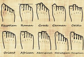 Your Foot Shape and Your Genealogy | Ancestral Findings #genealogy