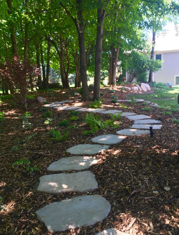 Meandering backyard shade garden. Backyard shade