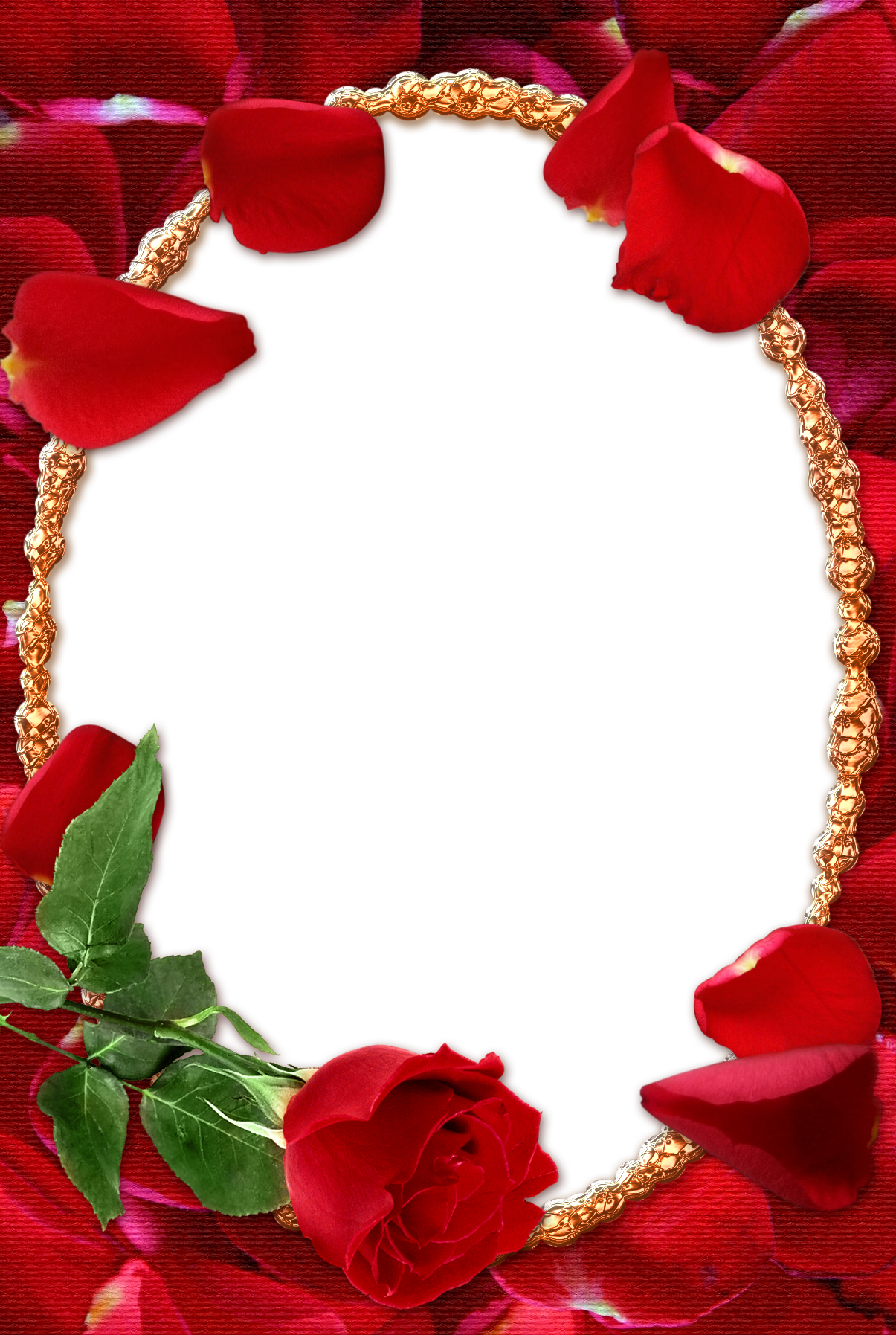 Rose Transparent Frame Png 1205 1795 Boarders And Frames Borders And Frames Red Roses