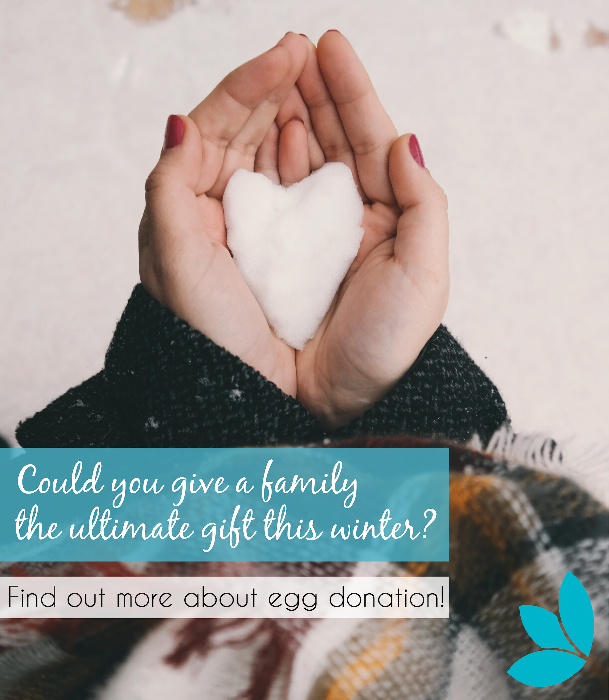 How Much Money To Donate Female Eggs