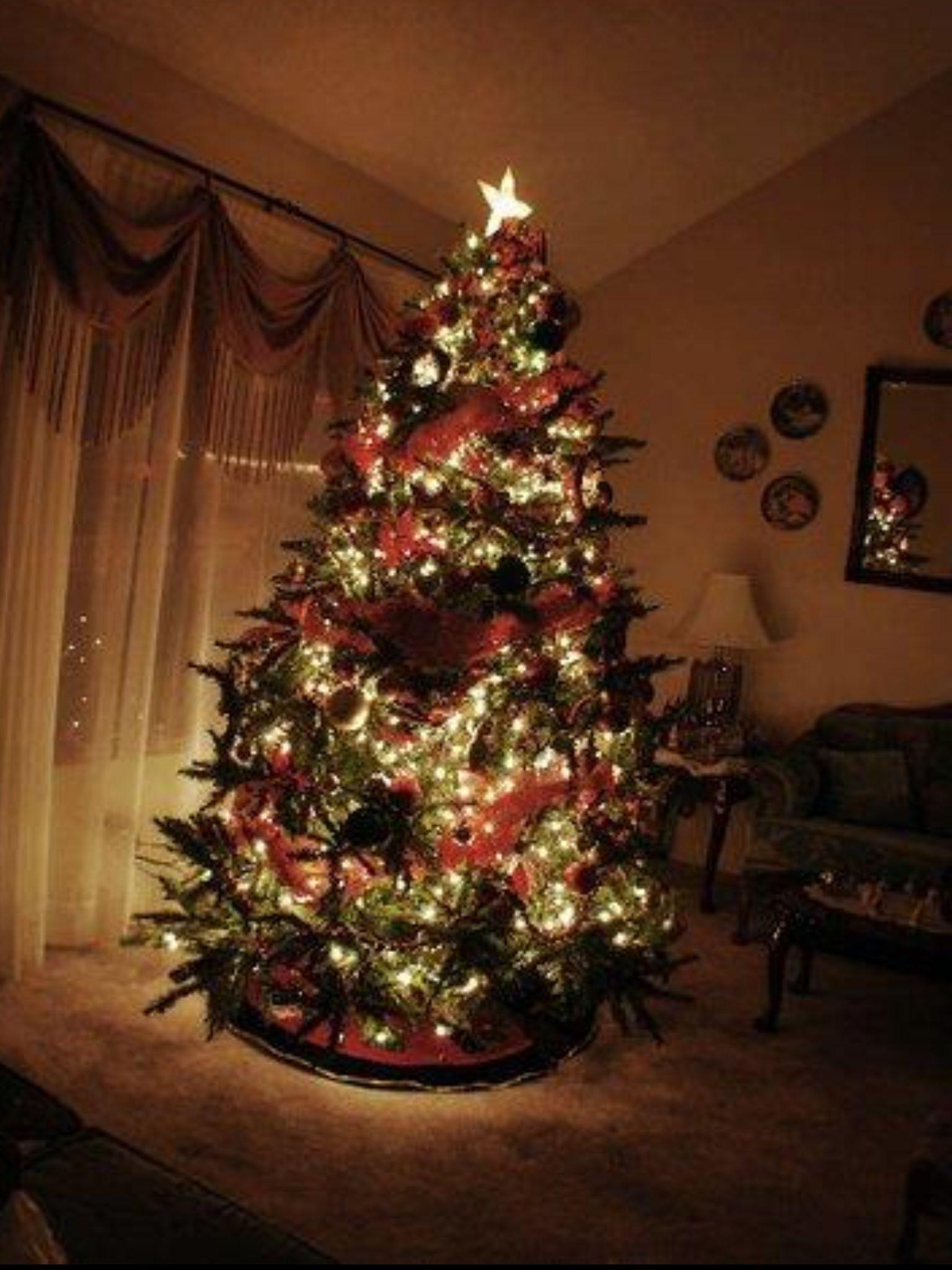 Red & Gold Christmas Tree Gold christmas, Gold christmas