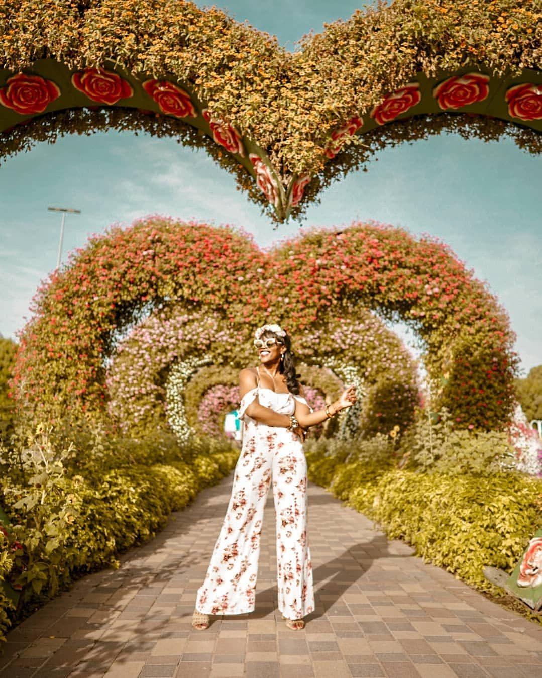 Dubai Miracle garden in 2019 Miracle garden, Dubai
