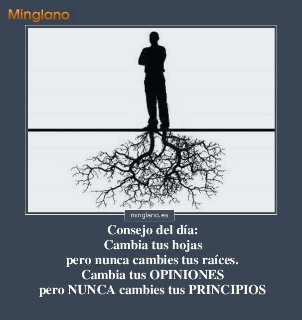 Frases Sobre Los Principios Morales
