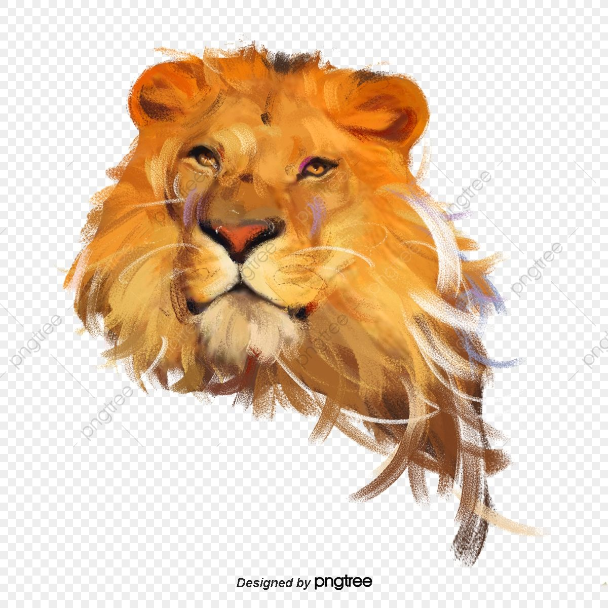 Lion Element Lion King Clipart King Of Animals Element Png Transparent Clipart Image And Psd File For Free Download In 2021 Lion Illustration Tribal Lion Animal Clipart