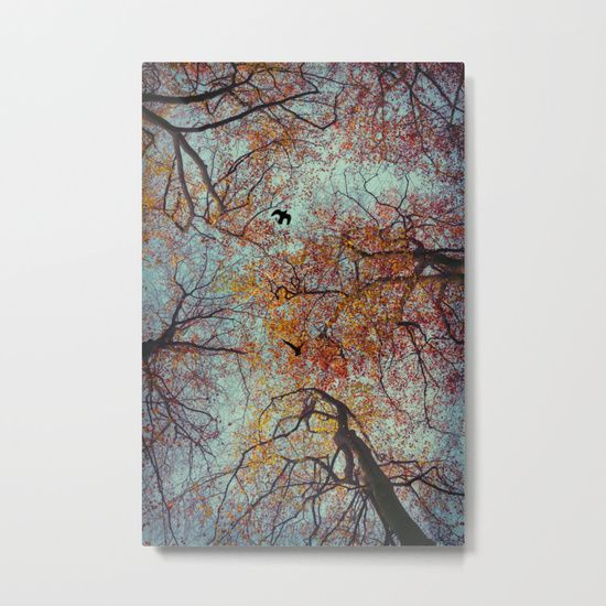 Our Metal Prints Are Thin Lightweight And Durable 1 16 Aluminum Sheet Canvas The High Gloss Finish Enhances Color And Produces Sha With Images Metal Prints Prints Metal