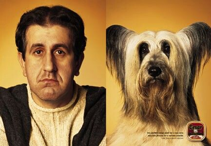 He looks worryingly similar to his dog.