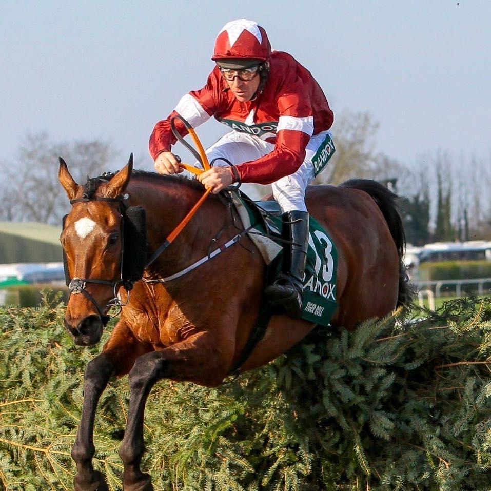 """GreatBritishRacing on Instagram """"TIGER ROLL, the gift"""