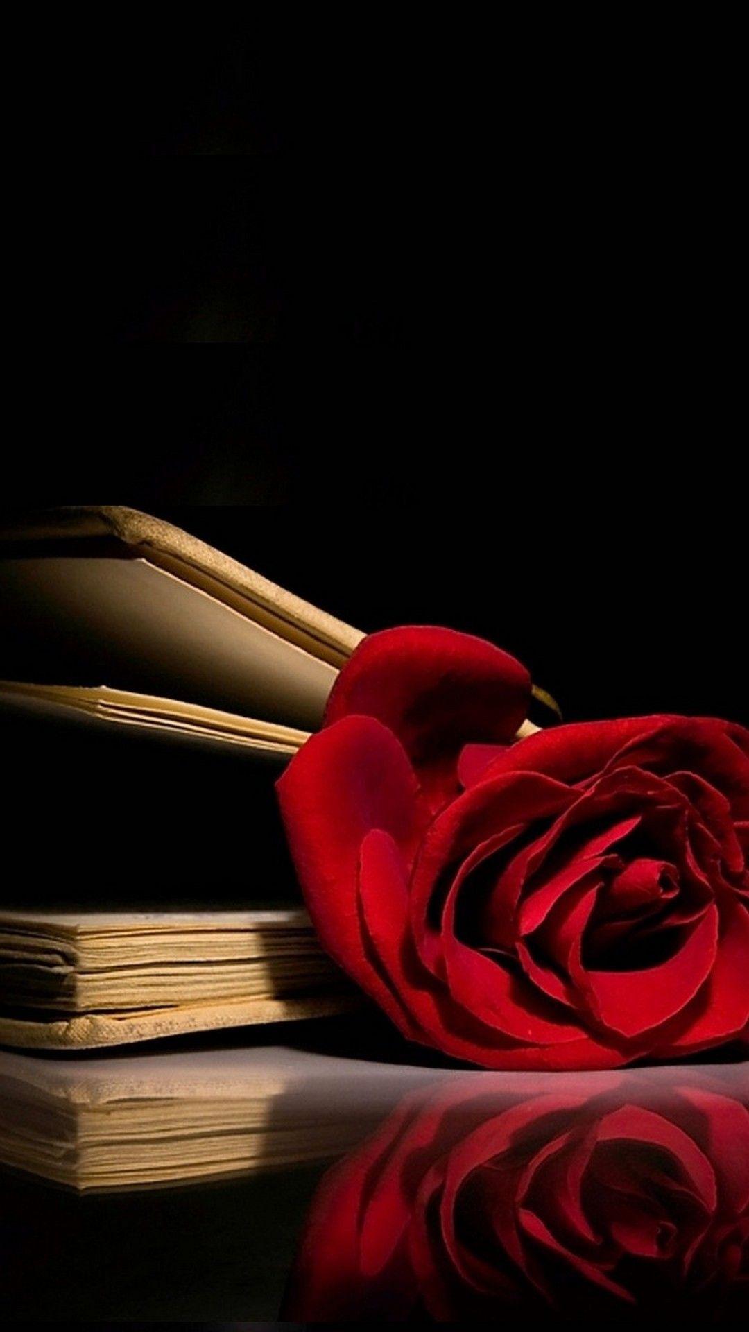 1080x1920 Red Rose Wallpaper Iphone 2018 Cute Screensavers Red Roses Wallpaper Rose Wallpaper Black Roses Wallpaper